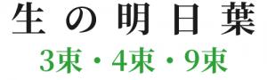 n-af45001